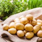 Минсельхоз ожидает коррекцию цен на картофель в июне после поступления нового урожая