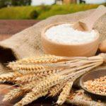 Производство пластика из пшеницы начнется в Татарстане