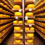 Подмосковье вышло в лидеры по производству сыра в России в январе