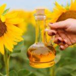 Правительство может ввести экспортную пошлину на подсолнечное масло с 1 сентября