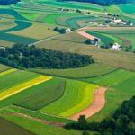Регионы усилят работу по вовлечению неиспользуемых земель в сельхозоборот