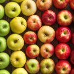 Еще 10 производителям яблок Республики Беларусь дали доступ на российский рынок