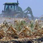 Фермерам упростят страхование от стихийных бедствий
