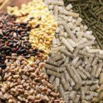 Россельхознадзор будет вести реестр кормовых добавок