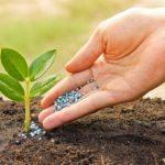 Минсельхоз обратится в Кабмин из-за роста цен на удобрения