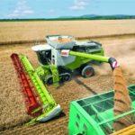 Около 5 млн тонн зерна планируют собрать в Воронежской области в 2021 году