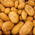 В России подешевели картофель и морковь