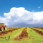 Около 3 тыс. гектаров неиспользуемых сельхозземель было изъято в России