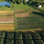 Карбоновая ферма и своя система мониторинга парниковых газов появятся в Вологодской области